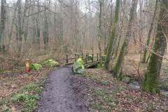 Rundlauf-Kleinostheimer-Wald-8