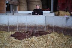 3 Wochen alte Duroc-Schweine