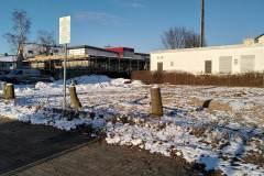 Baeume-Parkplatz-2