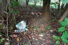 Aktion-Sauberer-Landkreis-Clean-Up-Day-2021-11