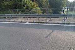 Aktion-Sauberer-Landkreis-Clean-Up-Day-2021-5