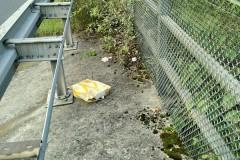Aktion-Sauberer-Landkreis-Clean-Up-Day-2021-6