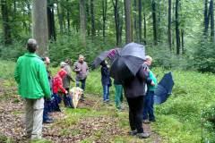 Waldbehung-mit-Niklas-2021-9