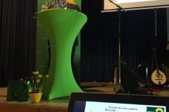 Tinos Vortrag über Kleinostheimer Aktivitäten