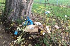 Müll im Industriegebiet Nord