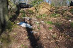 Müll auch im Wald (hier am PKW-Parkplatz Rohrberg/Spessart)