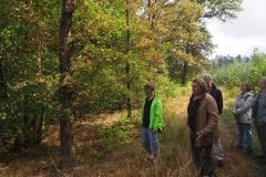 Waldexkursion Grüne-Kleinostheim im Hanauer Forst