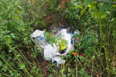 lieder schon üblich: Müll im Wald