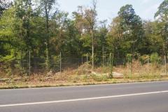 FFH Wald Hanau ist auch deutlich geschädigt